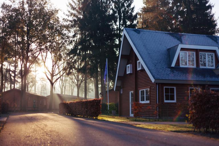 chata před stromy