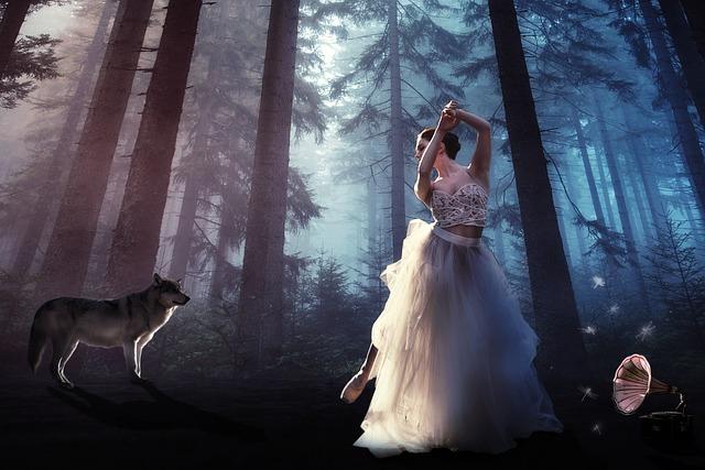 vlk a balerína